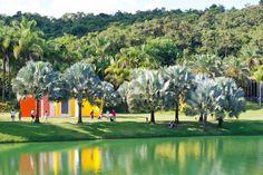 Jardim do Inhotim.