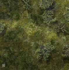 Marsh Battle Map 2 by hero339 on DeviantArt