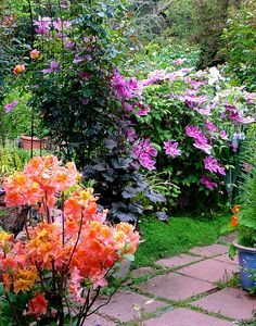 azalea and clematis Magical Gardens, Amazing Gardens, Beautiful Gardens, Beautiful Flowers, Flora Flowers, Fast Growing Plants, Secret Gardens, Rustic Cottage, Garden Signs