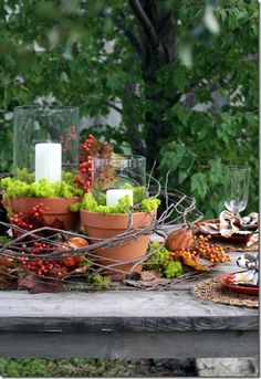 Easy to make fall or Thanksgiving table. Simple to assemble with terracotta pots, candles, and dried moss.