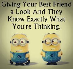 Funny minions images with funny quotes PM, Monday September 2015 PDT) - 10 pics - Minion Quotes Minion Photos, Minions Images, Funny Minion Pictures, Funny Minion Memes, Minions Quotes, Minion Humor, Funny Cartoons, Sunday Quotes Funny, Bff Quotes