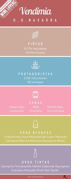 Las 5 claves de la vendimia en la D.O. Navarra. #NavarraWineLovers