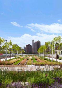 Hunter's Point South Waterfront Park, a 5-acre park in Queens