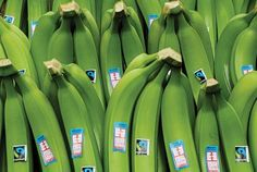 Produce Chief Sees the Appeal of Fair Trade Bananas After Trip Harvest Market, Fair Trade Chocolate, Economies Of Scale, Water Filtration System, Specialty Foods, All The Way Down, Bananas, Health Care, Competition