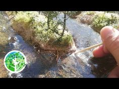 (815) How to make an AMAZING model river: Making a Scene Vol #2 - YouTube Water Effect, Miniature Fairy Gardens, Miniature Houses, Mini Plants, Train Layouts, Miniture Things, Model Trains, Resin Art, Painting Inspiration