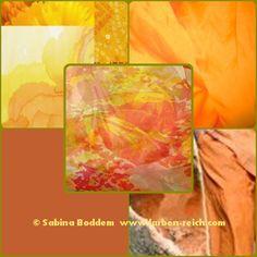 Trendfarben 2015/16 für den Frühlingstyp, Farbenreich, Sabina Boddem