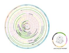 Galería de Esquemas y diagramas en la representación arquitectónica: 30 ejemplos gráficos para optimizar la organización, el análisis y la comunicación - 6