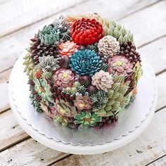 Succulent Cake (x-posted r/food) : succulents Fancy Cakes, Mini Cakes, Cupcake Cakes, Cupcake Art, Cup Cakes, Shoe Cakes, Cupcake Toppers, Pretty Cakes, Beautiful Cakes