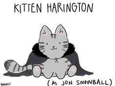 Kitten Harington would like to remind you that EVEN FICTIONAL CATS have nine lives. *WINK WINK*. Celebs as Cats Via Buzzfeed