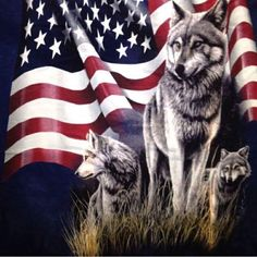 The Mountain T shirt blue tye dye wolves flag patriotic USA American Spirit, American Flag, Three Wolf Moon, Bark At The Moon, Wounded Warrior Project, Wolf Stuff, Wolf Spirit Animal, Thin Blue Line Flag, Pet Monkey