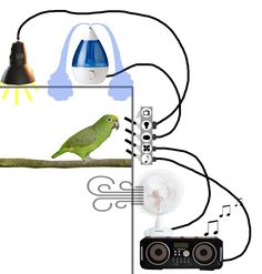 Complex enrichment idea for smart parrots, to give them possibility to alter their living conditions: on custom made switch system you can plug in different appliances: for example lamp, humidifier, fan, radio, even tv. The bird operates devices from cage, there the swiches that hold a appliance are supplied with bird-safe, longer switch. Empty socket places are left without a longer switch, to tell the bird it can not control that device this time.