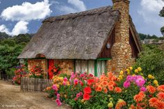 Thatched roof cottage in Carmel by the Sea, California Style Cottage, Cute Cottage, Cottage Living, Cottage Homes, Irish Cottage, Country Living, Storybook Homes, Storybook Cottage, Fairytale Cottage