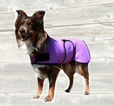 Dog Cool Coat custom made just for your dog with velcro front closure by madebyde on Etsy https://www.etsy.com/listing/90930201/dog-cool-coat-custom-made-just-for-your