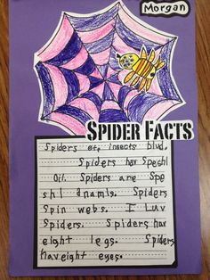 Spider Week!  A full week of Spider Activities for math, writing, literacy, and science!