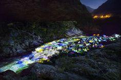 Flowers on the Gorge - Oboke Koboke | teamLab / チームラボ