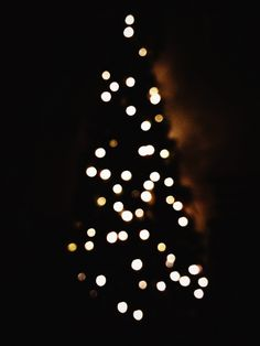 365 20.12.15 christmas tree lights | HPMcQ