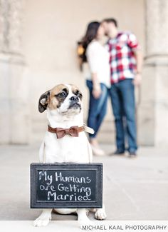 Engagement portrait with dog and fun sign, photographed by @michaelkaal. See more from this Tri-Cities wedding inspiration featuring dogs and horses! | The Pink Bride® www.thepinkbride.com