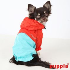 Puppia Paz Raincoat | Dog Raincoat