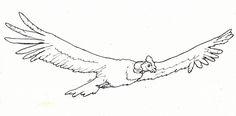 Dibujo para pintar de condor volando - Imagui Andean Condor, Body Art Tattoos, Grunge, Eagle, Doodles, Arabic Calligraphy, Lily, Kawaii, Birds