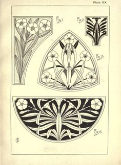 heaveninawildflower: Snowdrop Daisy Tulip Laurel Periwinkle Crocus Clematis Ivy Buttercup Oleander Art Nouveau style designs taken from 'Nature Drawing and Design' by. Motifs Art Nouveau, Motif Art Deco, Art Nouveau Design, Arts And Crafts Movement, Art Nouveau Illustration, Jugendstil Design, Nature Drawing, Art Inspo, Line Art