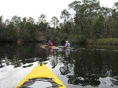 Kayaking is one of many great things to do around Cape San Blas.  Enjoy it in the Gulf of Mexico or St. Joe Bay...St. Joseph Peninsula State Park is right outside the gates to Barrier Dunes (our neighborhood).