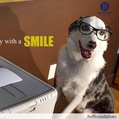 Start everyday with a smile :) #dogs #dogslife #smile #motivation #motivationmonday #hoppstetters via instagram.com/hankahoula