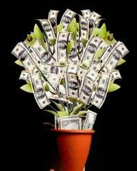 money bouquet made with my own hands pinterest gift money