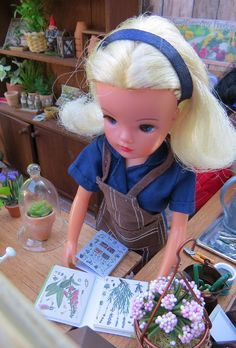 Sindy Doll, Doll Toys, Barbie, 1970s Dolls, Gardening Books, Toys For Girls, Doll Accessories, Plushies, Childhood Memories