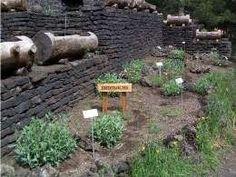 Giardino Botanico NUOVA GUSSONEA - Ragalna