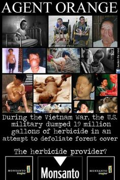 I can hardly look at these pictures and not think about the life these people were sentenced to at the hands of Monsanto's Agent Orange used in Viet Nam. Our gov't wants to allow Monsanto to spray that poison on our food and our farmers and anyone that lives within drift distance, will inhale it, which according to Dr. Charles Benbrook, top pesticide scientist, could be miles and much farther than pesticide companies claim.