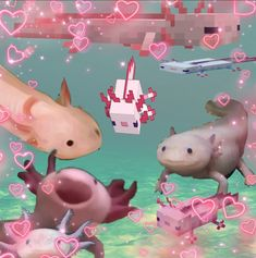 Cute Little Animals, Cute Funny Animals, Baby Animals, Cute Memes, Funny Memes, Animal Pictures, Cute Pictures, Axolotl Cute, Memes Lindos