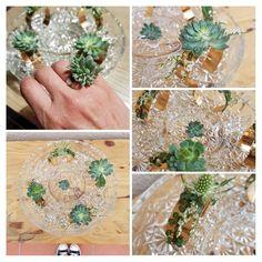 Mignonneries  Bijoux succulentes  Bracelet / bague / collier ...