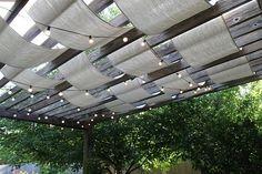 drop cloth pergola covering - plus lights!