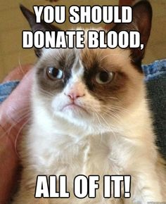 Grumpy Cat's just upset because she can't donate. Help a kitty out and donate blood (just some of it). Even better, donate blood to the Armed Services Blood Program and help service men and women worldwide with the blood products they need. Grumpiness be gone! #militaryblood #grumpycat #supportthetroops