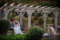 Taking a break from the wedding festivities at the pergola garden at Hawkesdene.