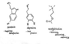 Science tattoo idea. I'd probably go with acytlcholine... You know, being a teacher and all...