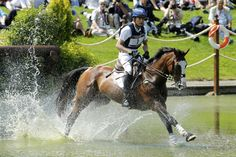 Boyd Martin of the U.S. rides Otis Barbotiere in the Eventing Cross Country equestrian event of the London 2012 Olympic Games, July 30, in Greenwich Park