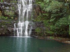 Es el lugar indicado para aquellas personas que quieran realizar turismo ecológico.