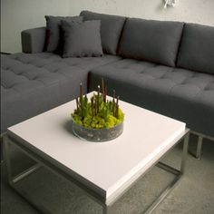 Drake Coffee Table by Gus Modern. This product can be found in photography for the Unearthed Collection.
