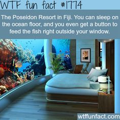 The Poseidon Resort in Fiji - WTF fun facts