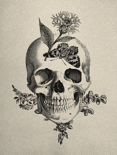 Butterfly Skull Engraving Digital Collage von EverythingGraphic