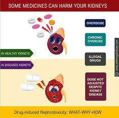 Human Kidney, Metabolic Acidosis, Nephrotic Syndrome, Muscle Protein, Kidney Health, Chronic Kidney Disease, Bone And Joint, Over Dose
