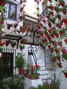 Festival de Patios cordobeses España