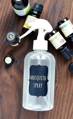 This easy DIY mosquito repellent spray is simple to make using some essential oils and witch hazel. It& a great way to combat pesky bugs this summer. Essential Oils For Mosquitoes, Mosquito Repellent Essential Oils, Diy Mosquito Repellent, Essential Oil Bug Spray, Mosquito Spray, Citronella Essential Oil, Natural Mosquito Repellant, Doterra Essential Oils, Insect Repellent