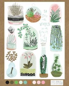 A Creative Life - making it work: Friday Finds - Lucy Banaji - Illustrator Plant Illustration, Botanical Illustration, Graphisches Design, Cactus Y Suculentas, Botanical Art, Illustrators, Book Art, Craft, Art Drawings