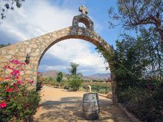 Valle de Guadalupe: Baja California's Surprising Wine (and Food) Destination - Condé Nast Traveler.