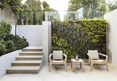 Steps from the basement up to the terraced garden above. The green wall makes good use of space in tight areas and brings the garden into the house.