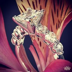 Blooming princess hearts.. obsessed with this ring!
