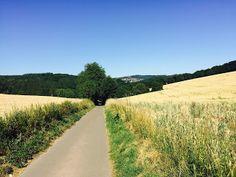 Laufend gebloggt: Bliestal-Hangard-Münchwies-Steinbach-Ottweiler-Bliestal