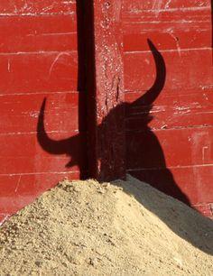 Bullshadow